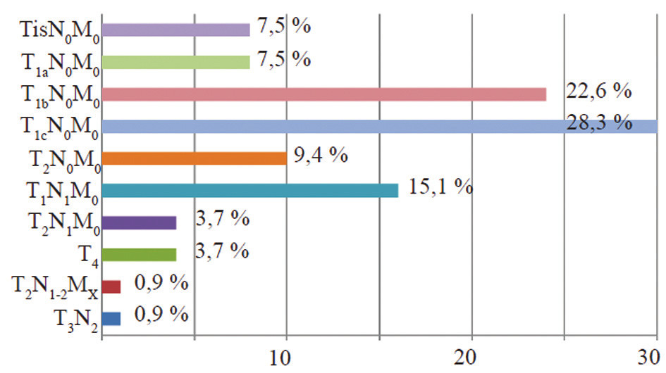 TNM klasifikace Graph 3: TNM classification