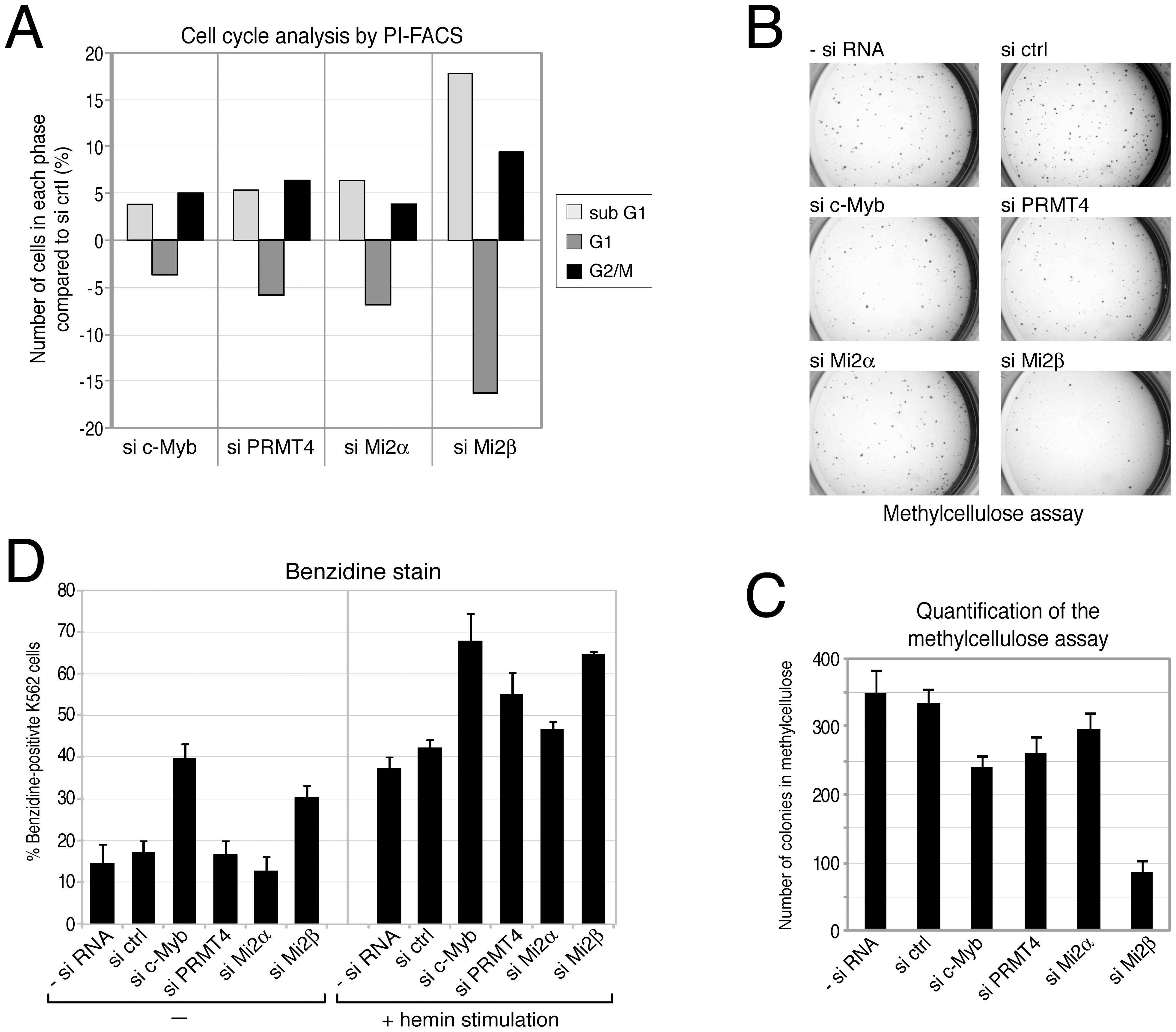 PRMT4 and Mi2 are important regulators of proliferation and differentiation function in human erythropoiesis.