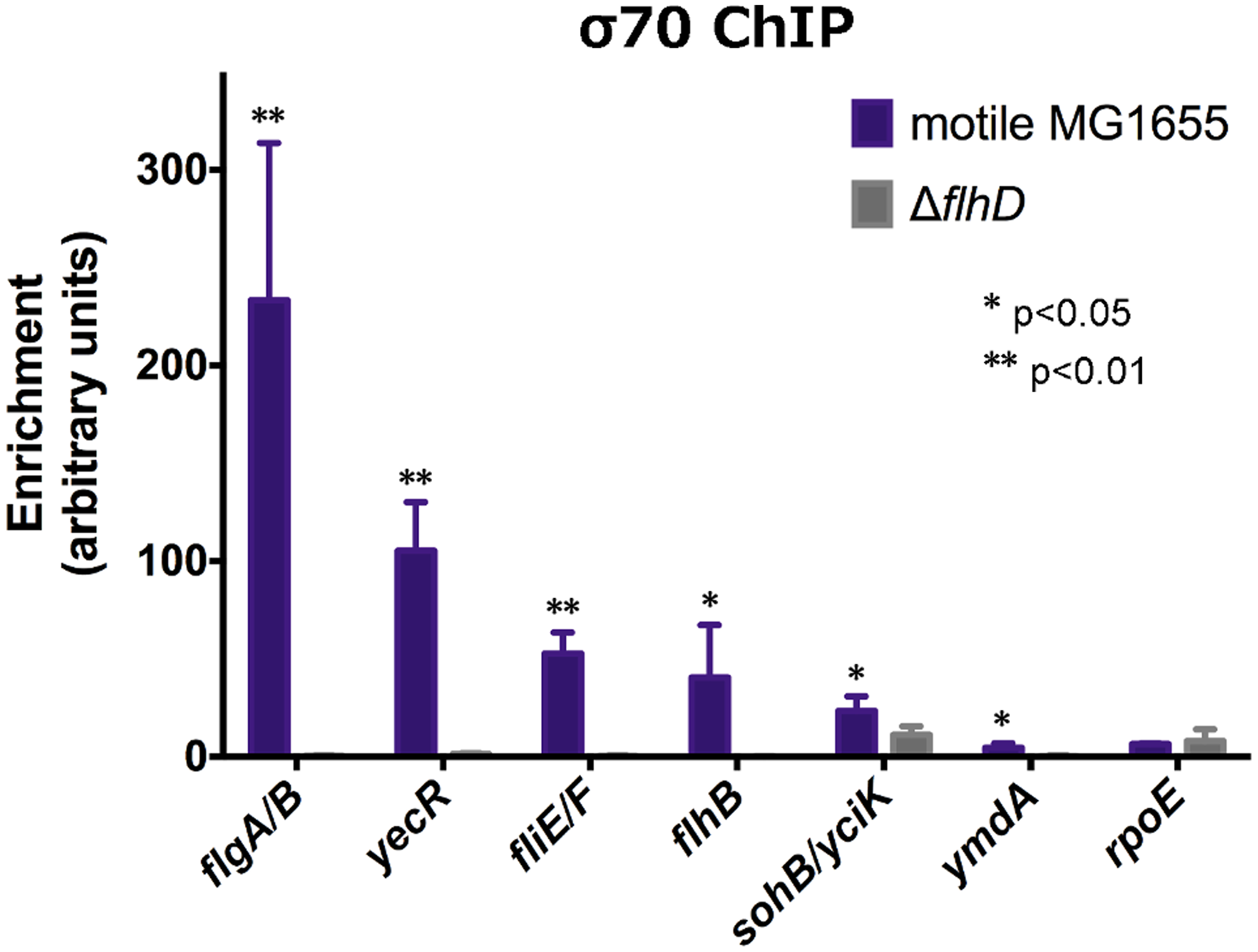 FlhDC is required for σ<sup>70</sup>:RNAP recruitment to FlhDC-dependent promoters.