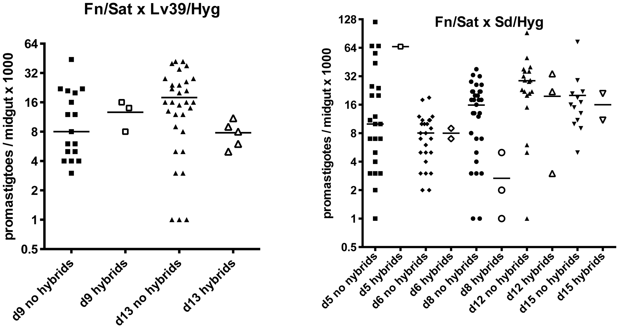 Infection levels at time of dissection in <i>P. duboscqi</i> midguts with and without hybrids.