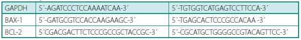 Použité primery  Table 2. Used primeres