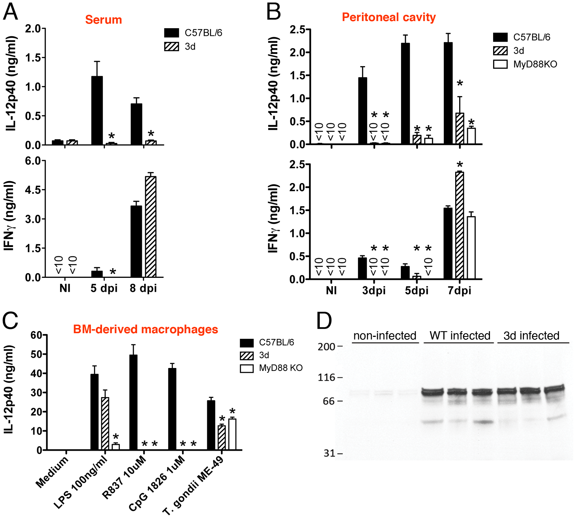UNC93B1 mutation affects IL-12 and early IFNγ production.