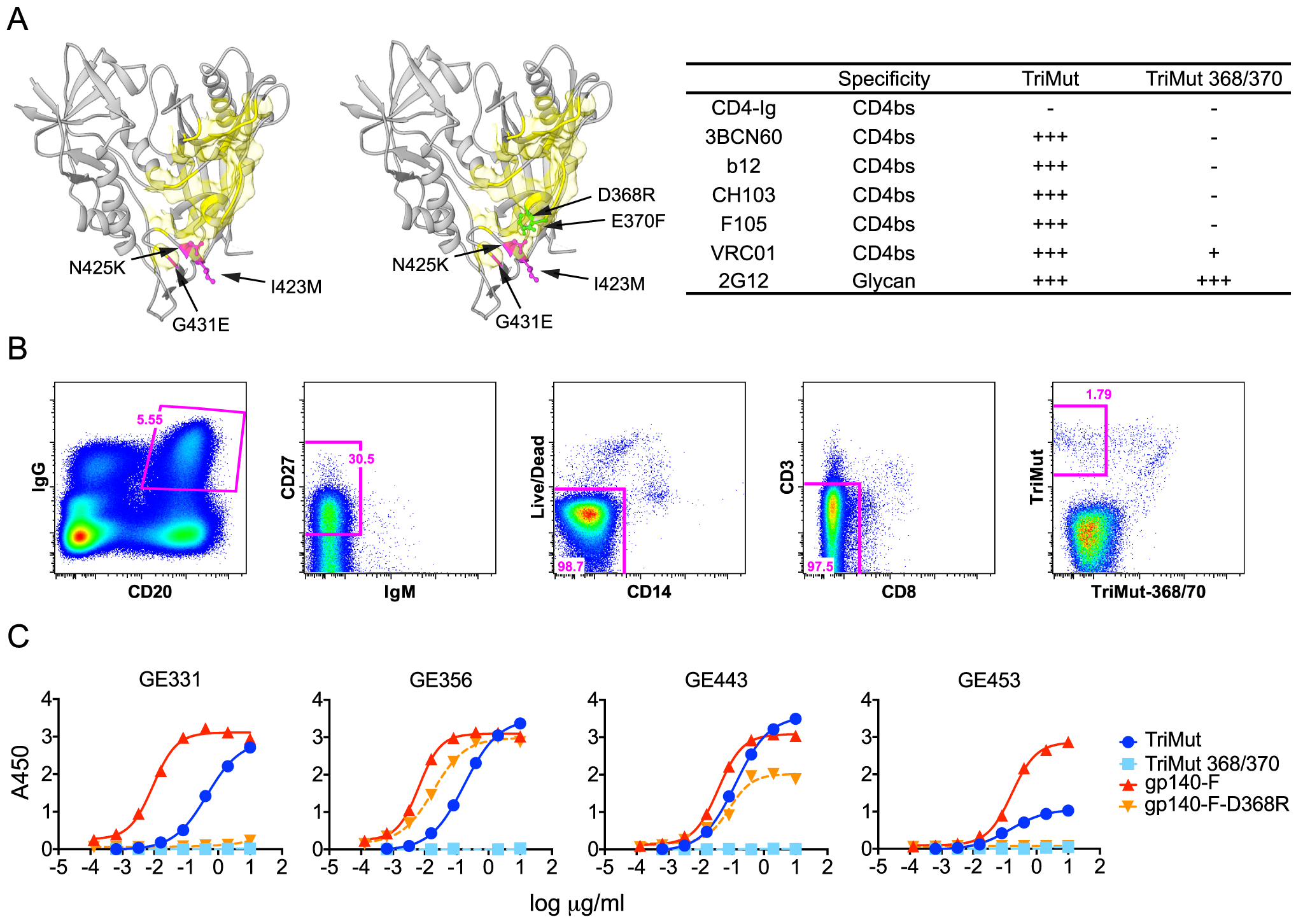Isolation of HIV-1 gp120 CD4bs-specific vaccine-induced NHP memory B cells, NHP MAbs and their binding specificities.
