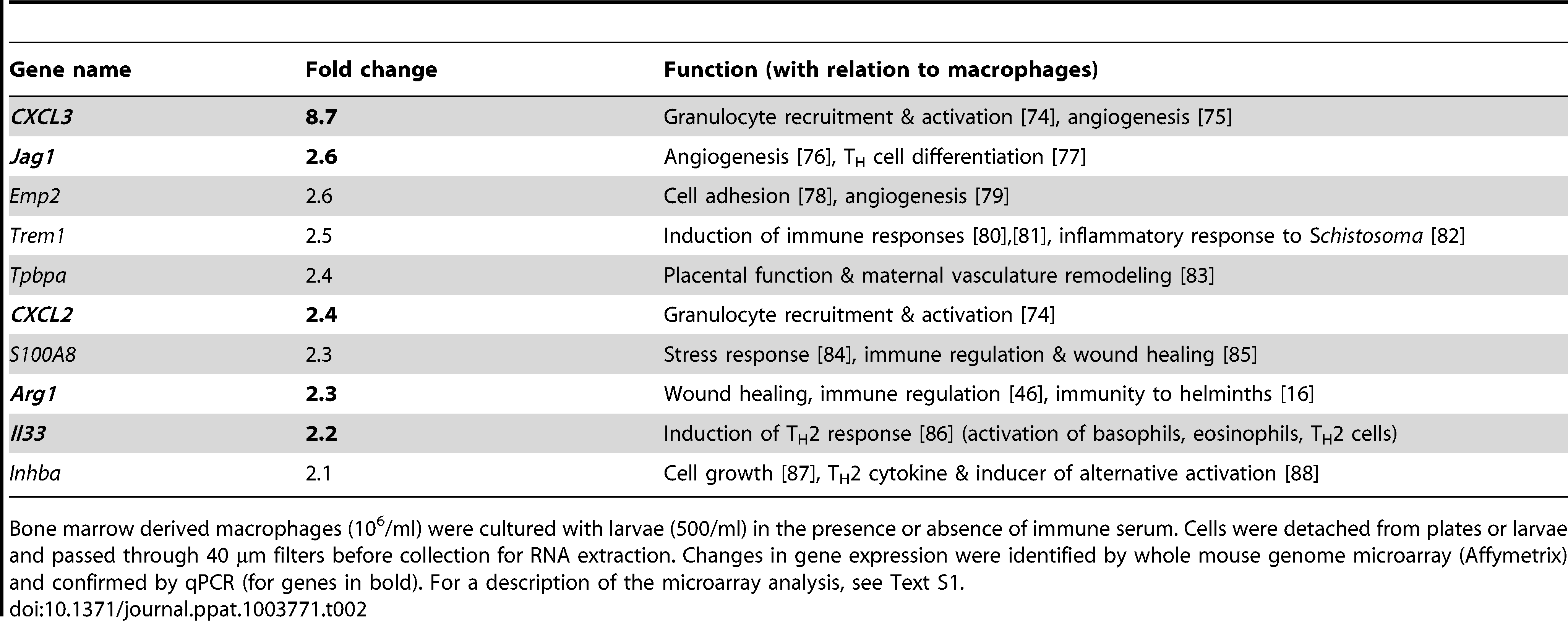Fold induction and function of the 10 most upregulated genes in macrophages co-cultured with immune serum in combination with larvae as compared to larvae alone.