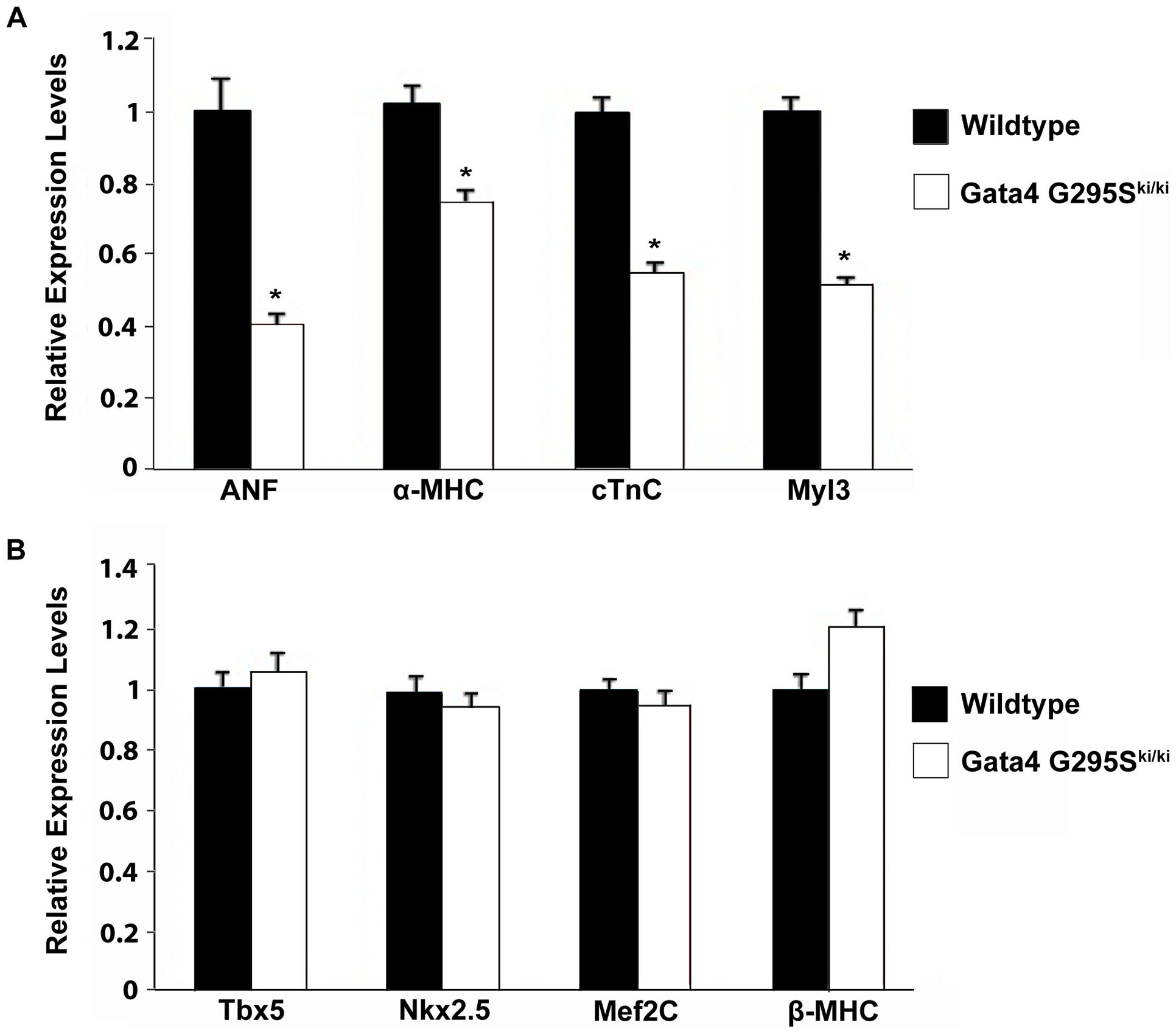 Decreased expression of Gata4 target genes in <i>Gata4 G295S<sup>ki/ki</sup></i> embryonic hearts.