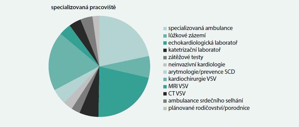 Struktura specializovaného pracoviště péče o nemocné s VSV v dospělosti