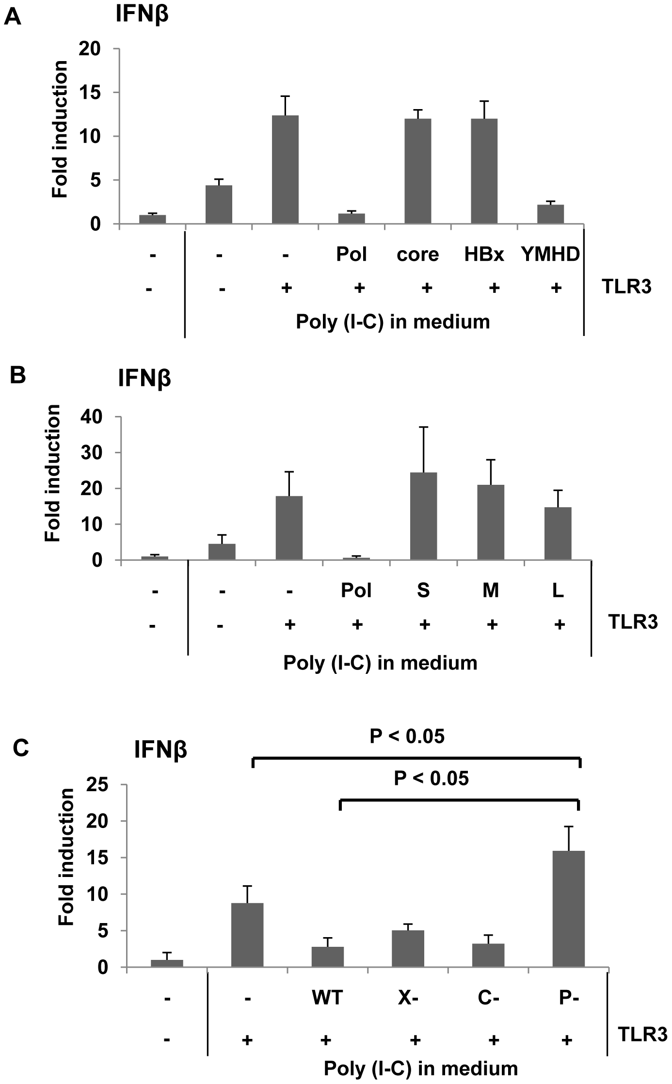 HBV Pol inhibits dsRNA-induced IFNβ promoter activation.