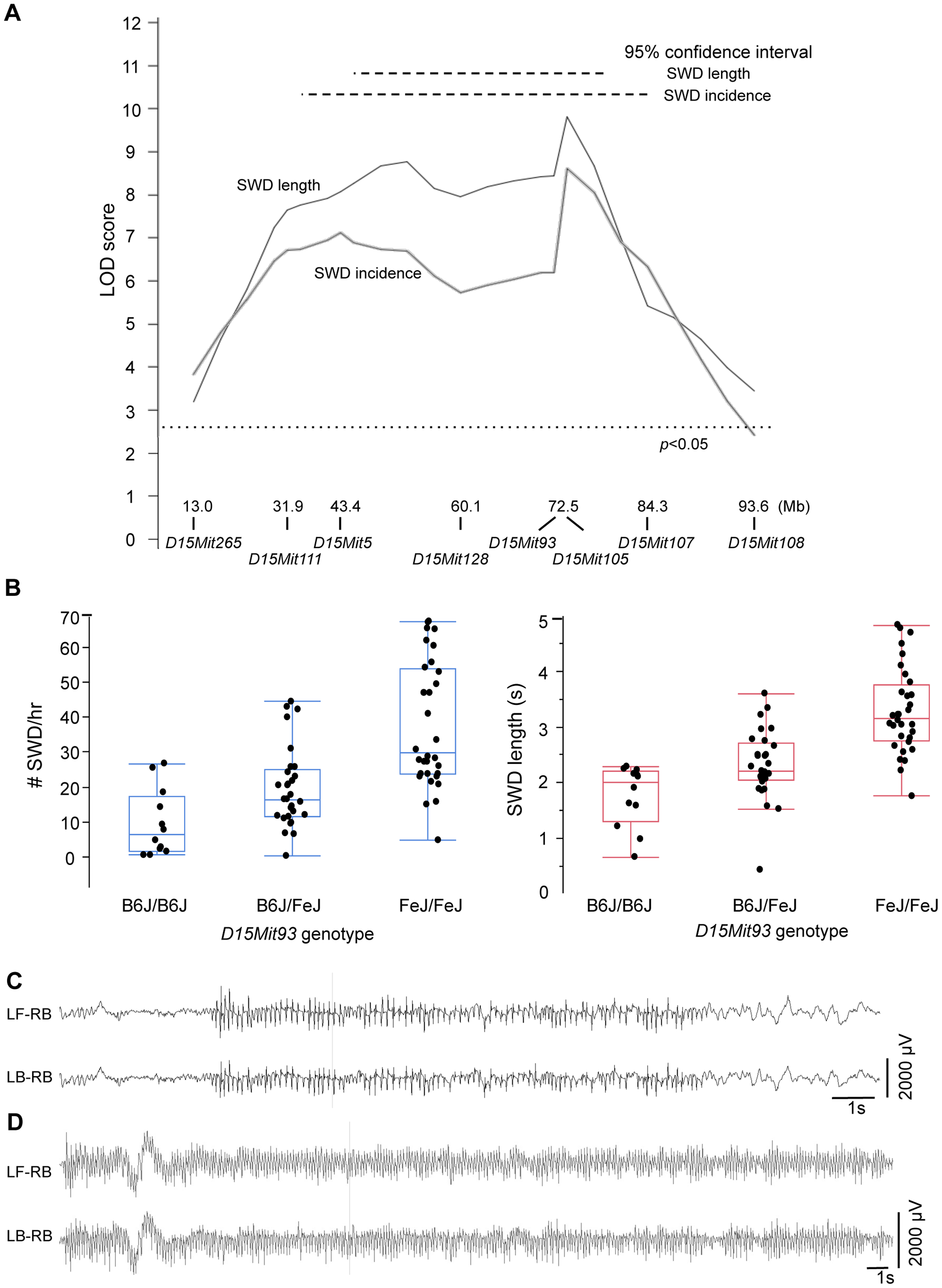 SWD phenotypes conferred by <i>G4swdm1</i>, a Chr 15 strain modifier of <i>Gria4</i> absence seizures.