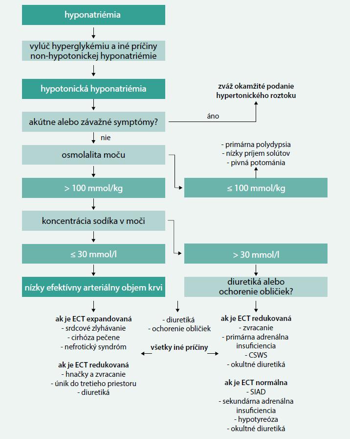 Diagnostický algoritmus. Upravené podľa [11]