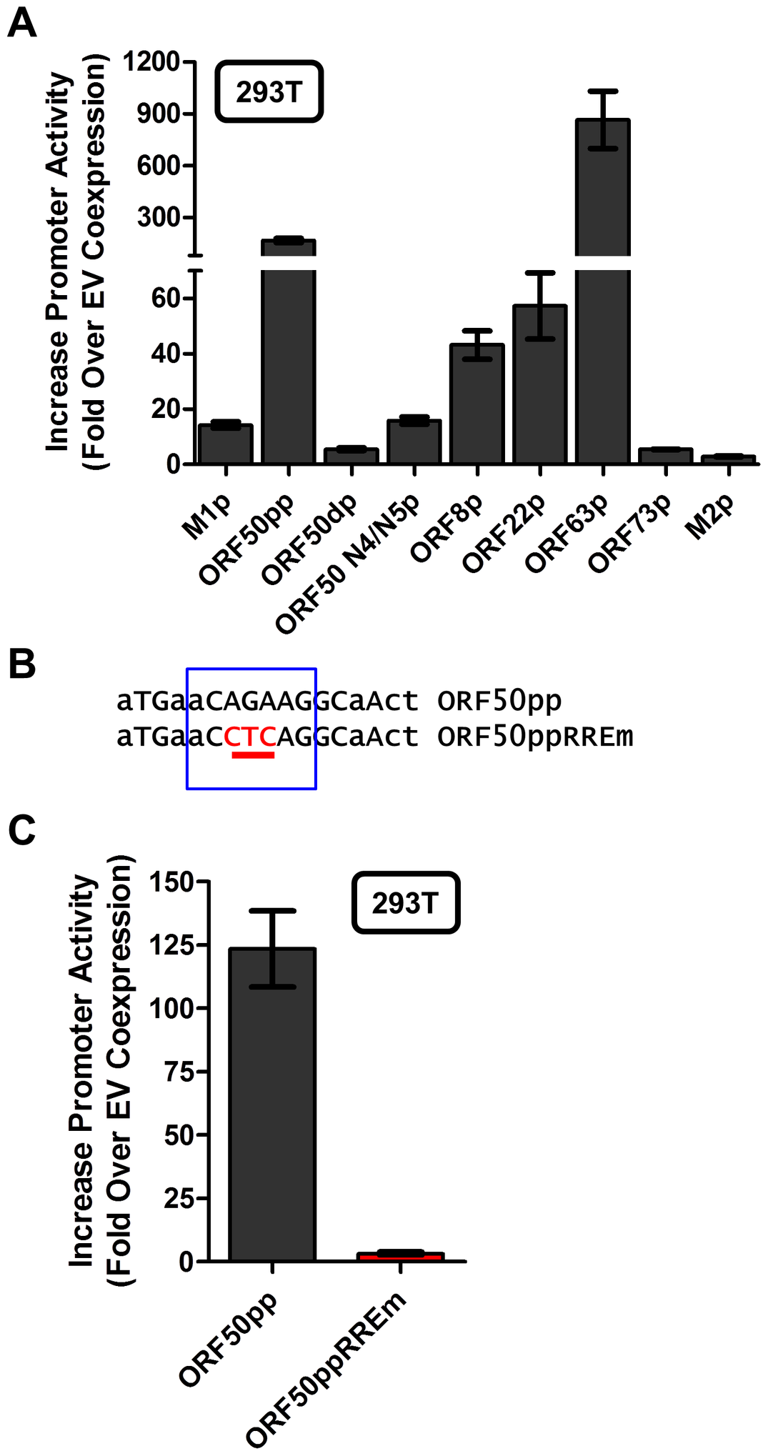 Novel RRE involved in Rta activation of the gene 50 proximal promoter.