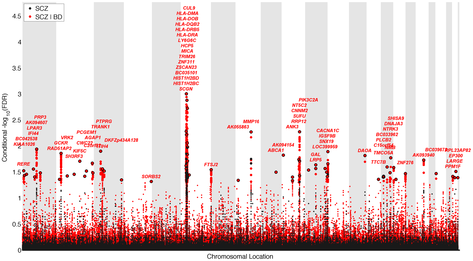 """""""Conditional Manhattan plot"""" of conditional −log<sub>10</sub> (FDR) values for schizophrenia (SCZ) alone (black) and SCZ given bipolar disorder (BD; SCZ