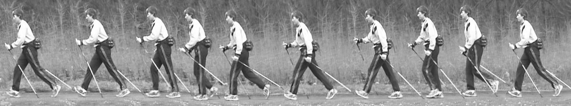 Jeden krokový cyklus probandky při chůzi s holemi (nordic walking).