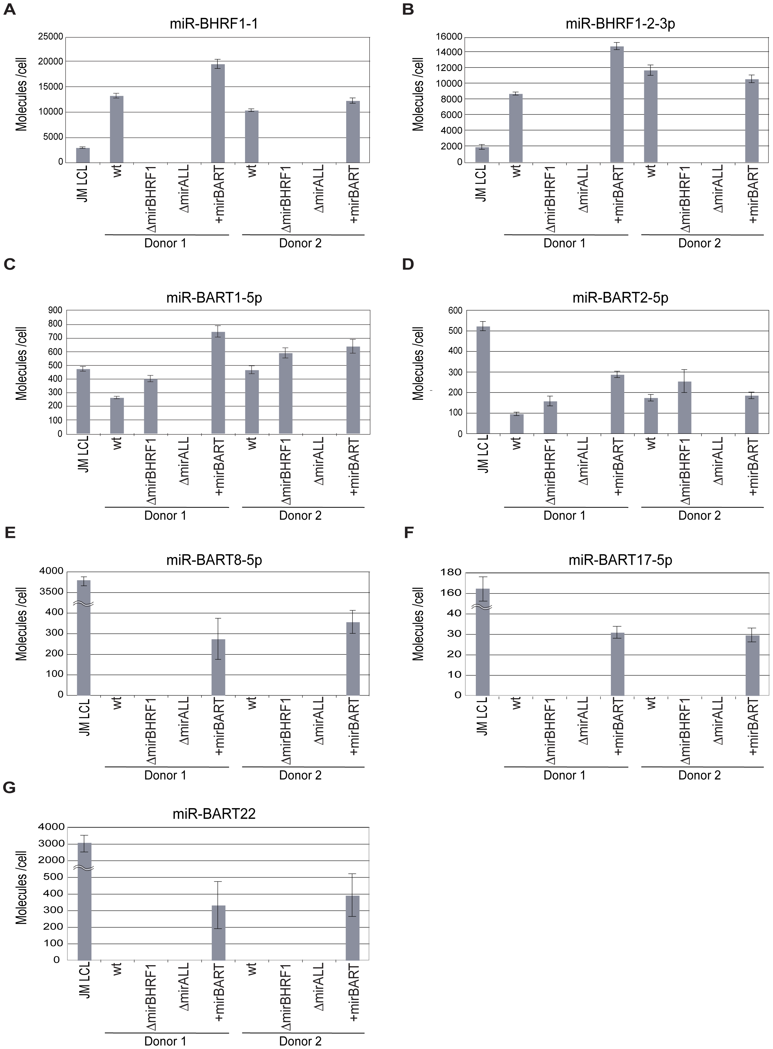 Absolute quantification of EBV-encoded miRNAs in established LCLs infected with prototype 2089 or miRNA-mutant EBVs.