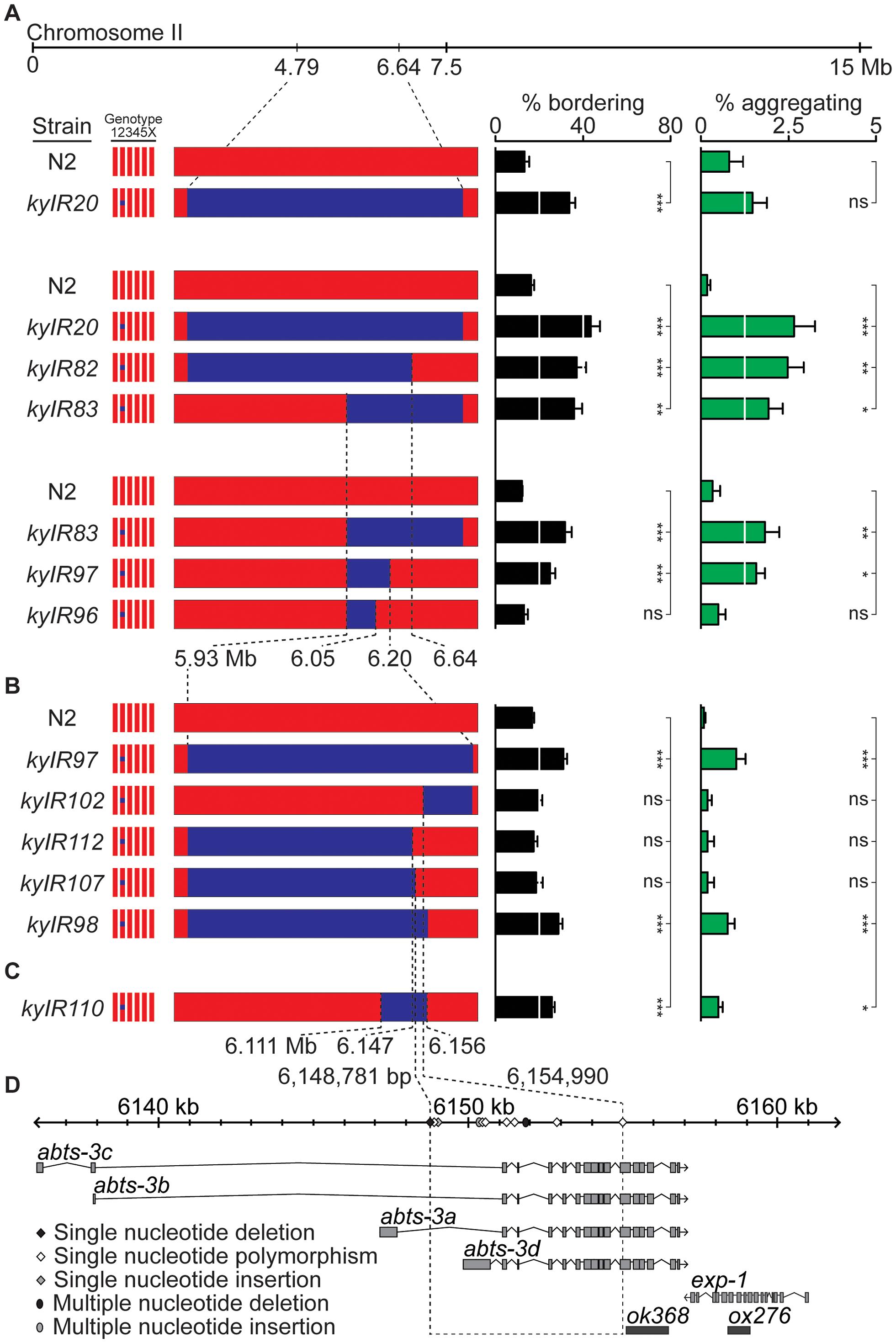 A social behavior II-QTL maps to a 6.2 kb region.