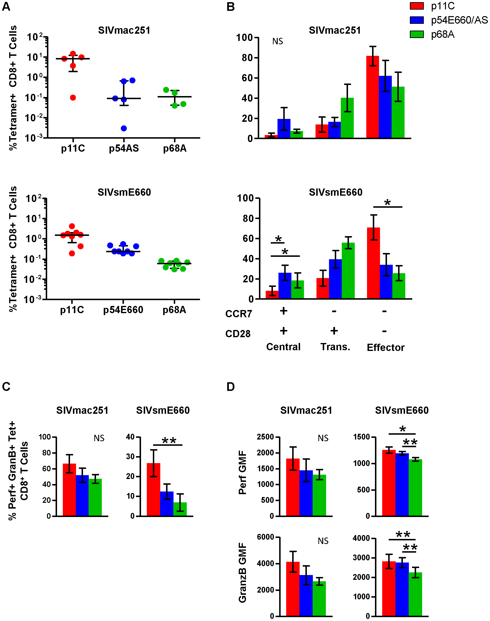 Phenotype and cytotoxic potential of dominant and subdominant epitope-specific cells during chronic SIVmac251 and SIVsmE660 infection.