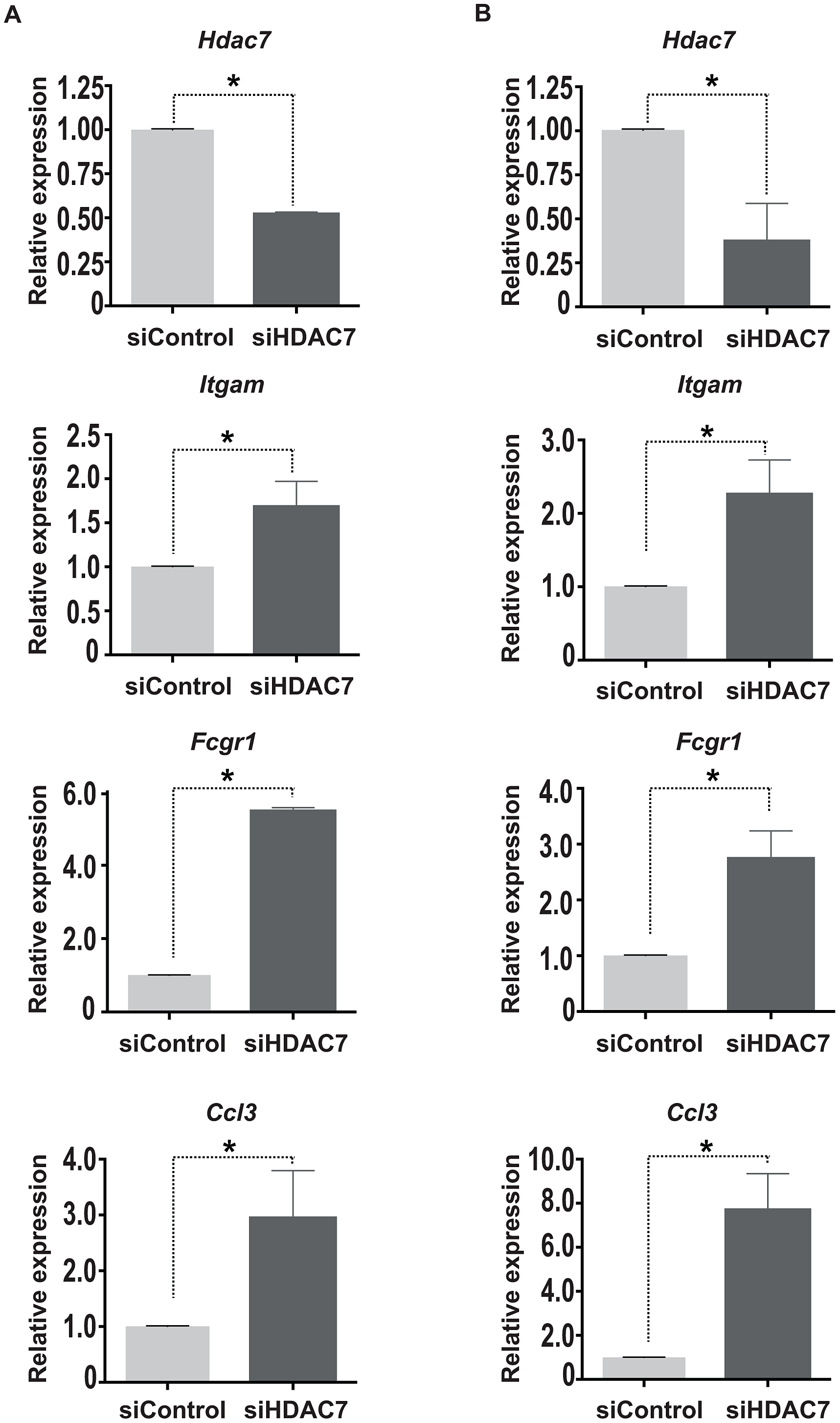 HDAC7 knock down leads to the de-repression of macrophage genes.