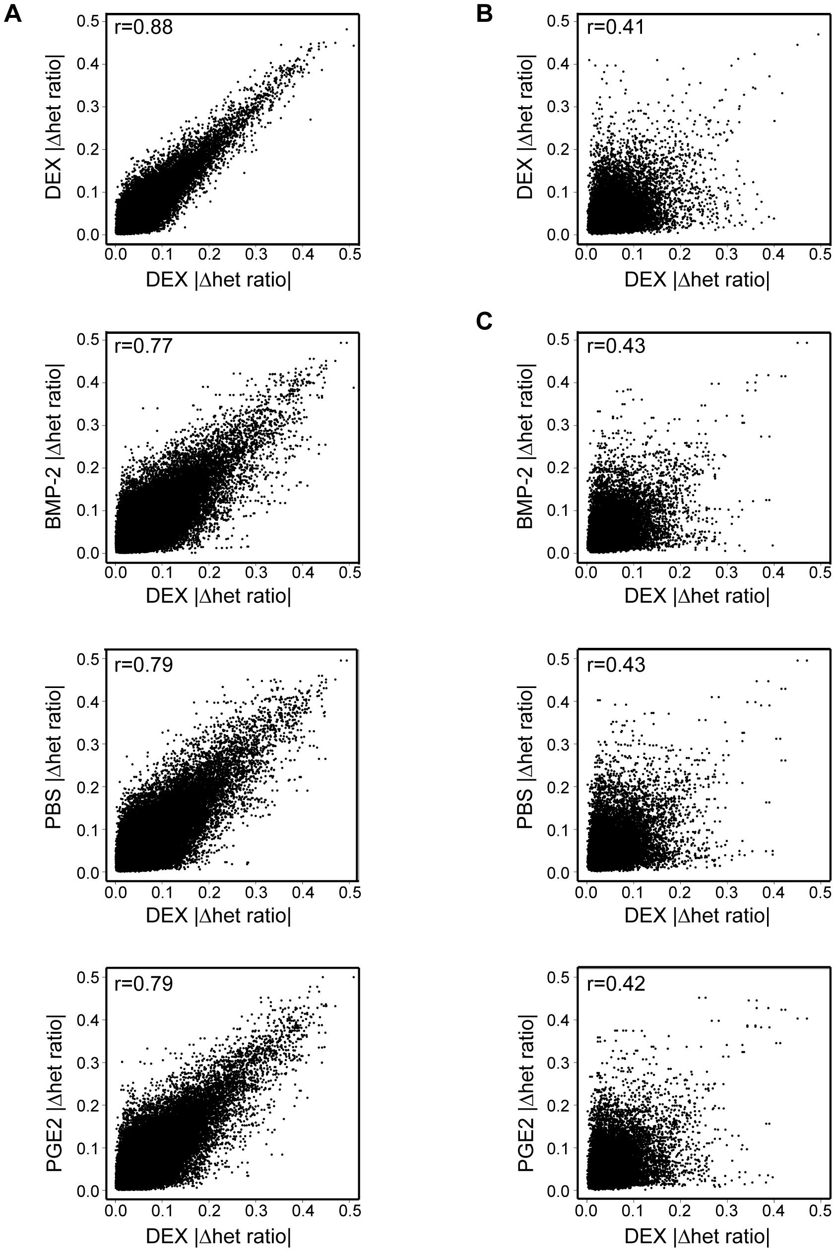 Global effect of environmental perturbation on allelic <i>cis</i>-regulation.