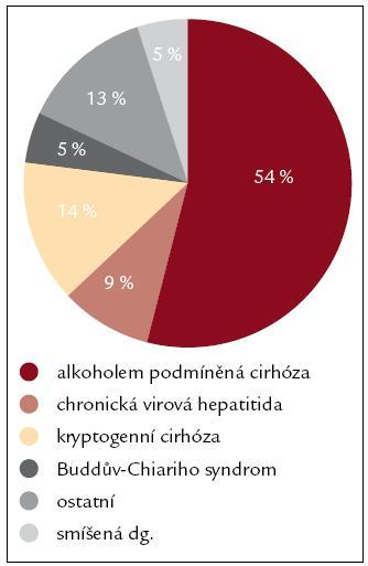 Rozdělení nemocných podle etiologie jaterního onemocnění.