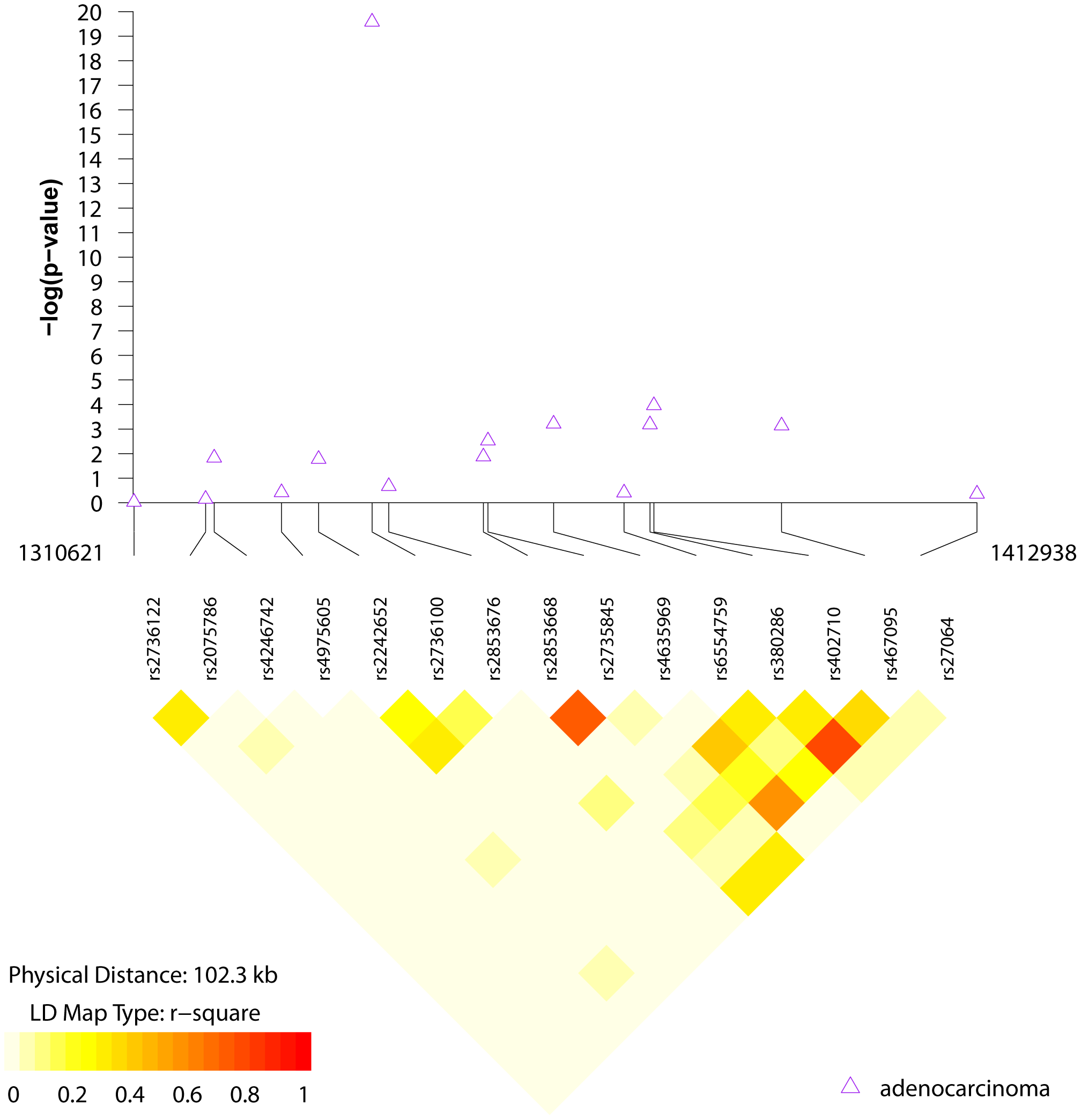 LD structure and association results for the chr5p15 region and lung adenocarcinoma.