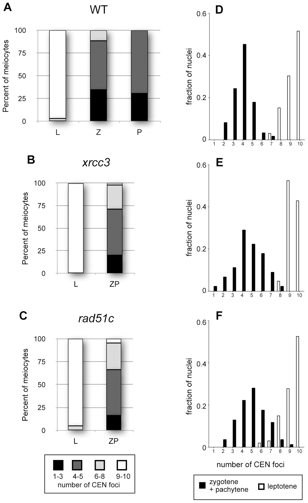 Centromere pairing in Arabidopsis <i>xrcc3</i> and <i>rad51C</i> mutants.