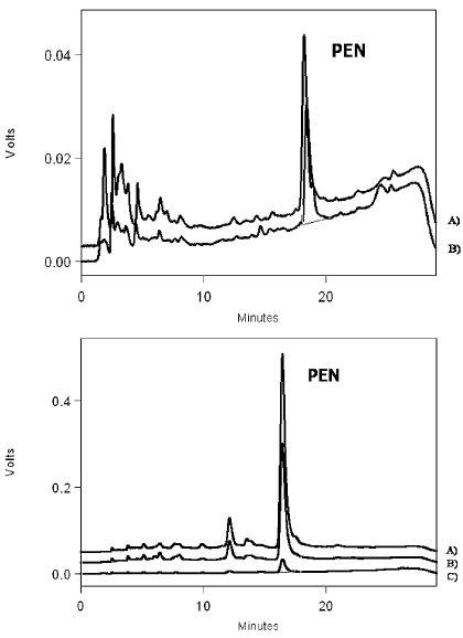 a, b. Ukázky HPLC separace pentosidinu (PEN) v reálných vzorcích. a) Chromatogram reprezentativního vzorku moči pacienta s pokročilou osteoartrózou před operací (A) a 6 měsíců po instalaci totální kloubní náhrady (B). b) Porovnání koncentrací pentosidinu (PEN) v extraktech z kloubních tkání postižených osteoartrózou: A) synoviální membrána, B) chrupavka, C) subchondrální kost