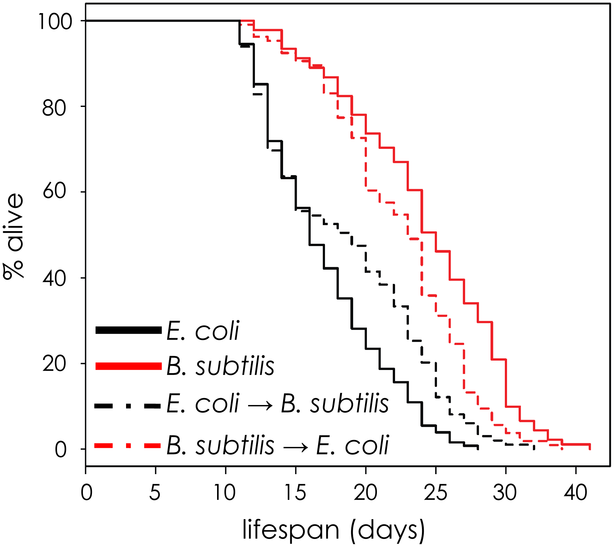 The effect of <i>E. coli</i> pathogenicity persists after worms are shifted to <i>B. subtilis</i>.