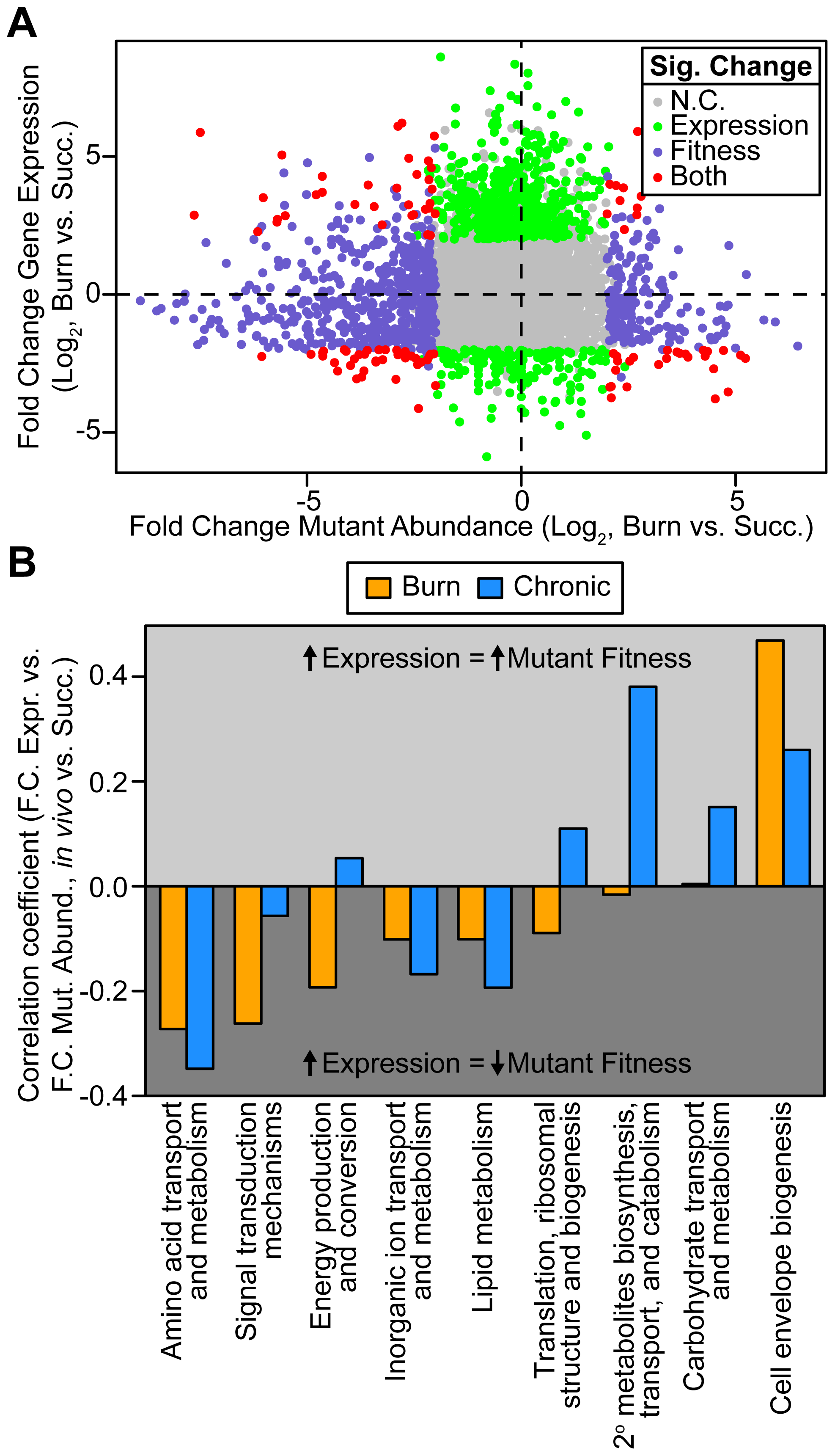 Genome-wide <i>P. aeruginosa</i> gene expression and knockout fitness in wound infection are not correlated.