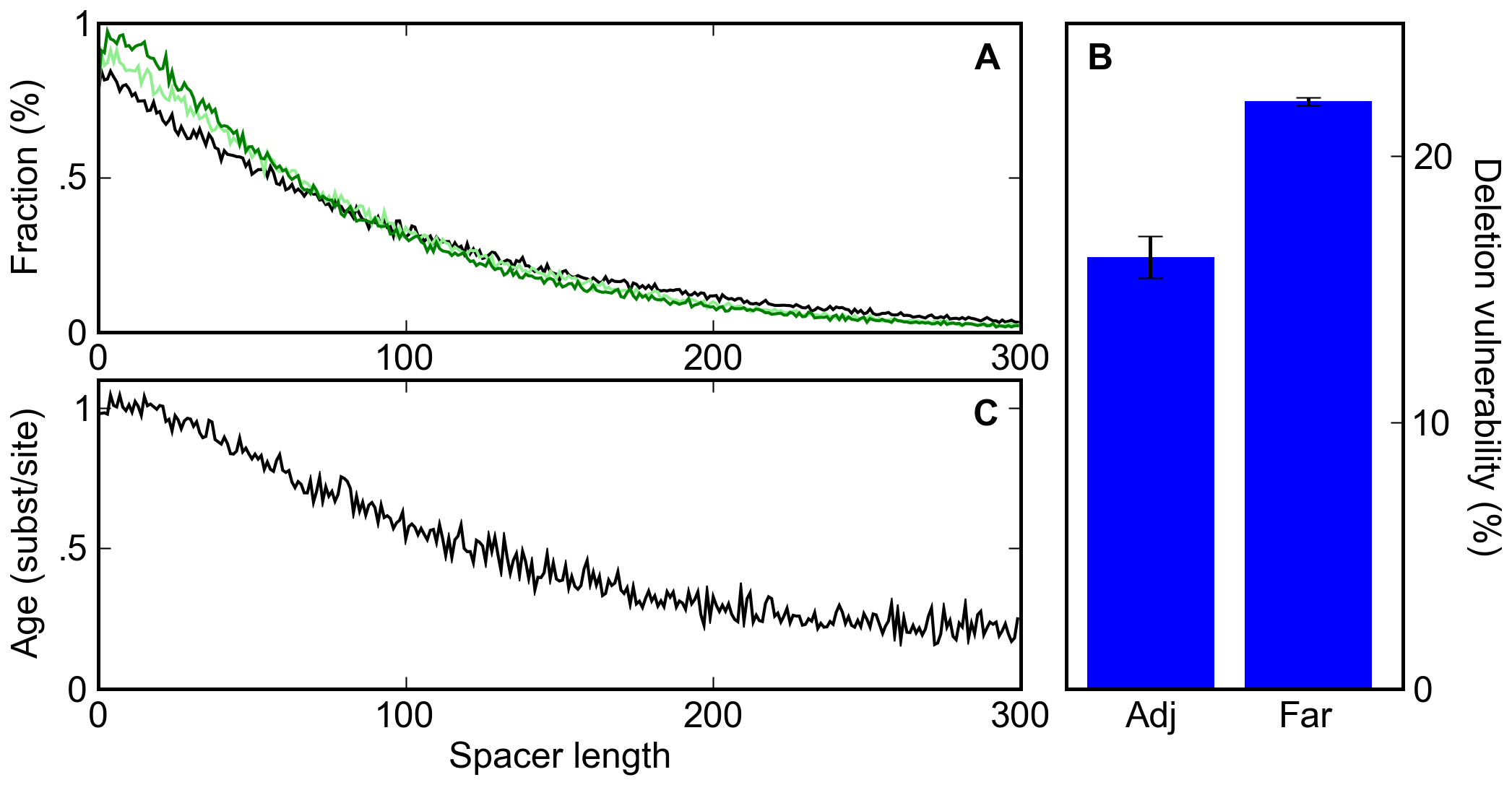 A deletion bias leads to clustering of sites and the apparent conservation of clustered sites.