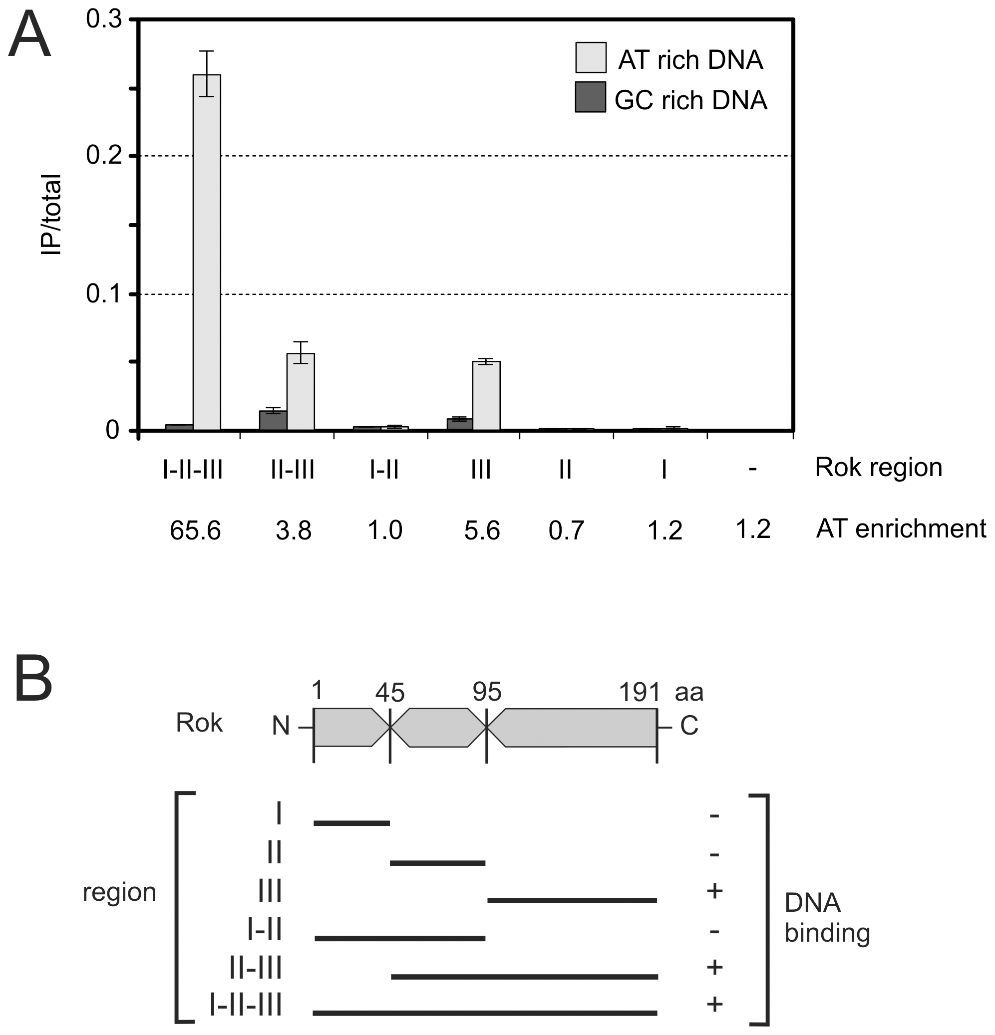 Preferential binding of Rok to A+T-rich DNA in <i>E. coli</i>.