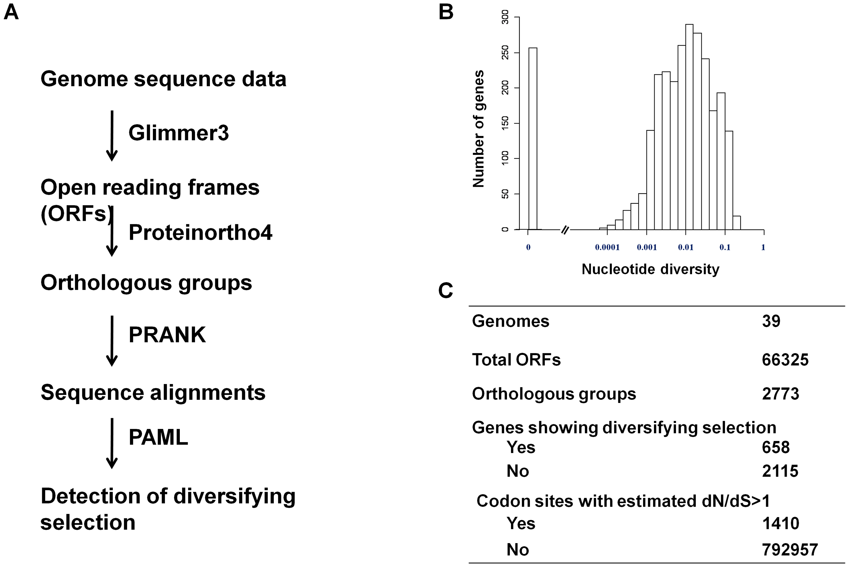 Detection of diversifying selection in pneumococcus.