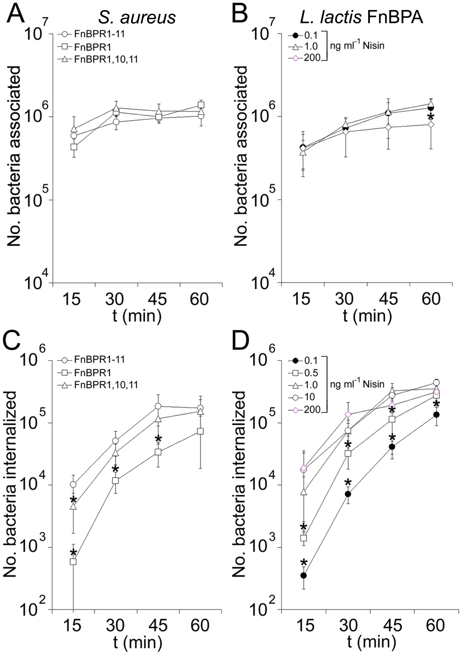 FnBPA composition and expression level modulate the rate of bacterial internalization.