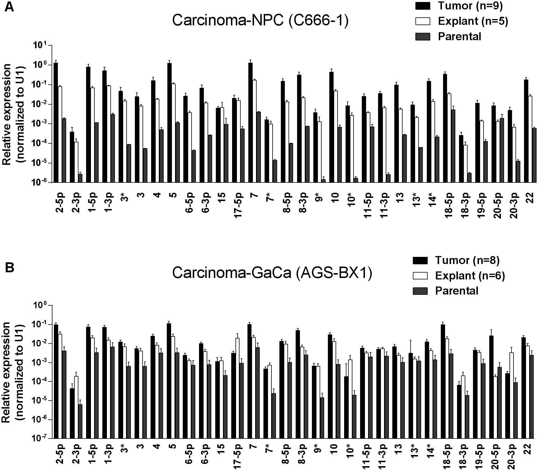 BART miRNA expression is up regulated when carcinoma cells are grown <i>in vivo</i>.