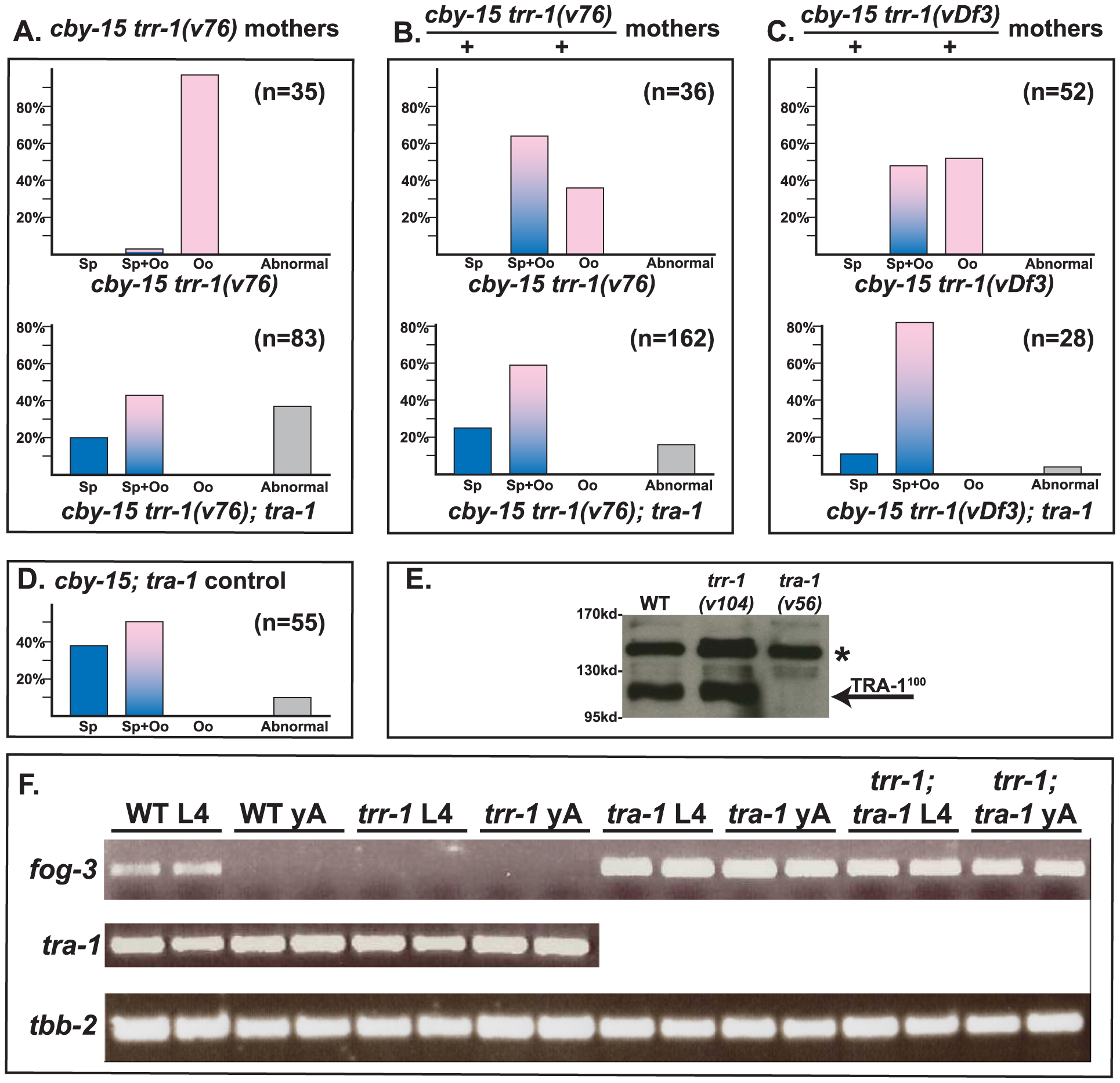 TRR-1 acts through TRA-1 to promote spermatogenesis and <i>fog-3</i> expression.