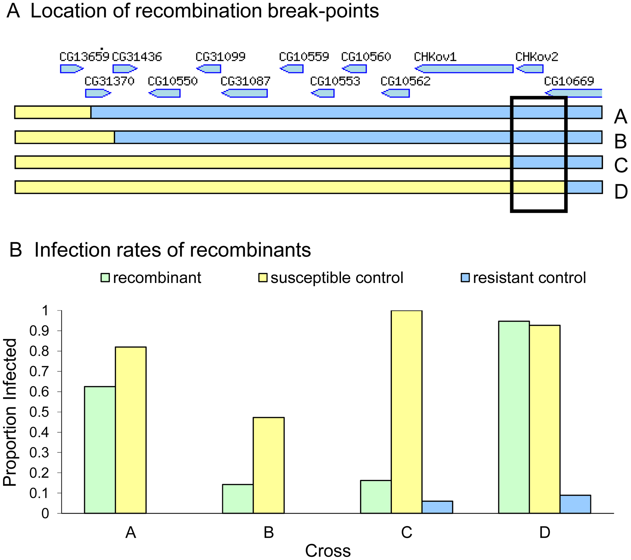 Mapping resistance using site-specific male-induced recombination.