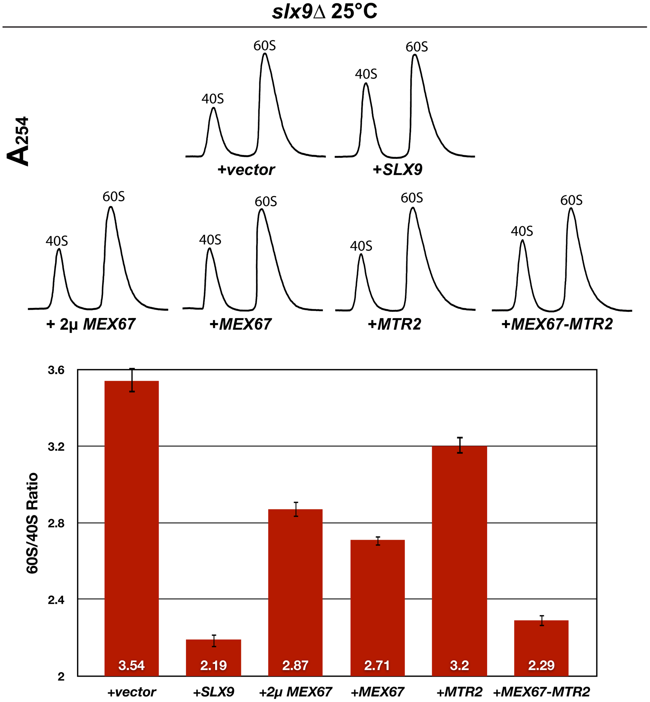 Over-expression of Mex67 and Mtr2 rescues the 60S/40S subunit imbalance of the <i>slx9</i>Δ mutant.