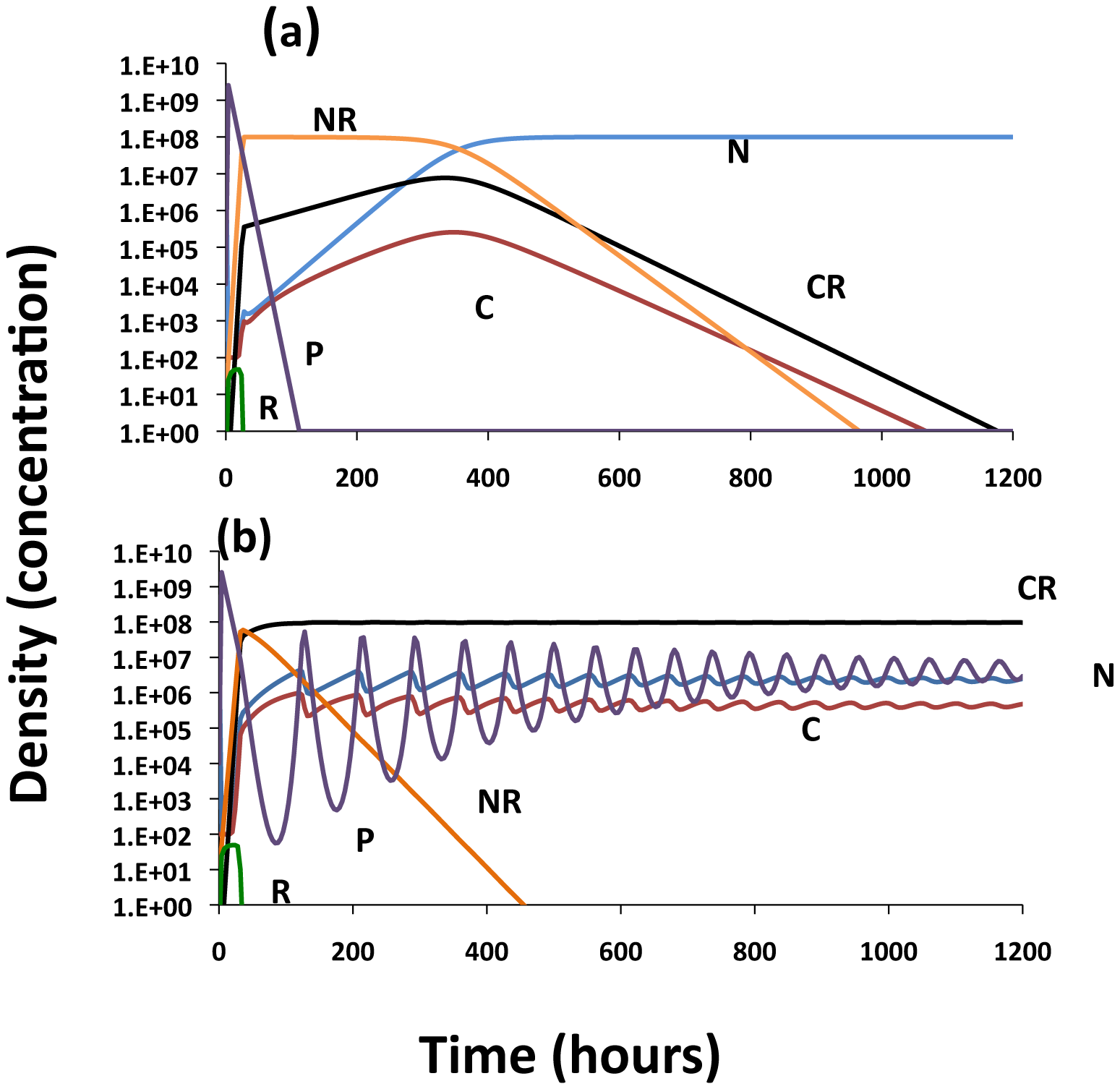 Population dynamics of lytic phage, <i>P</i>, with sensitive and resistant non–CRISPR bacteria, <i>N</i> and N<sub>R</sub>, non-immune and immune CRISPR-encoding cells, C and C<sub>R</sub>, respectively.