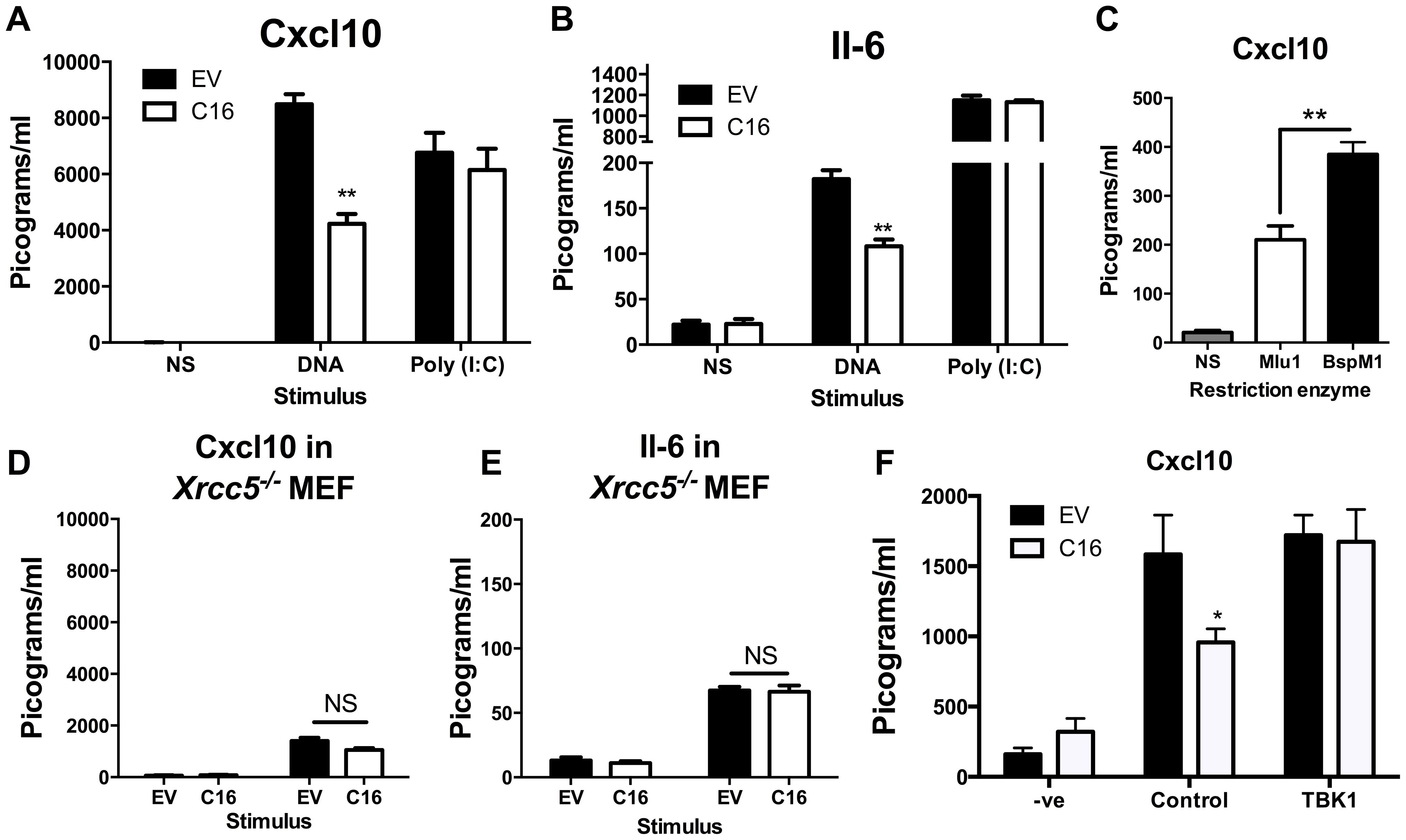 C16 inhibits DNA sensing, but not RNA sensing.