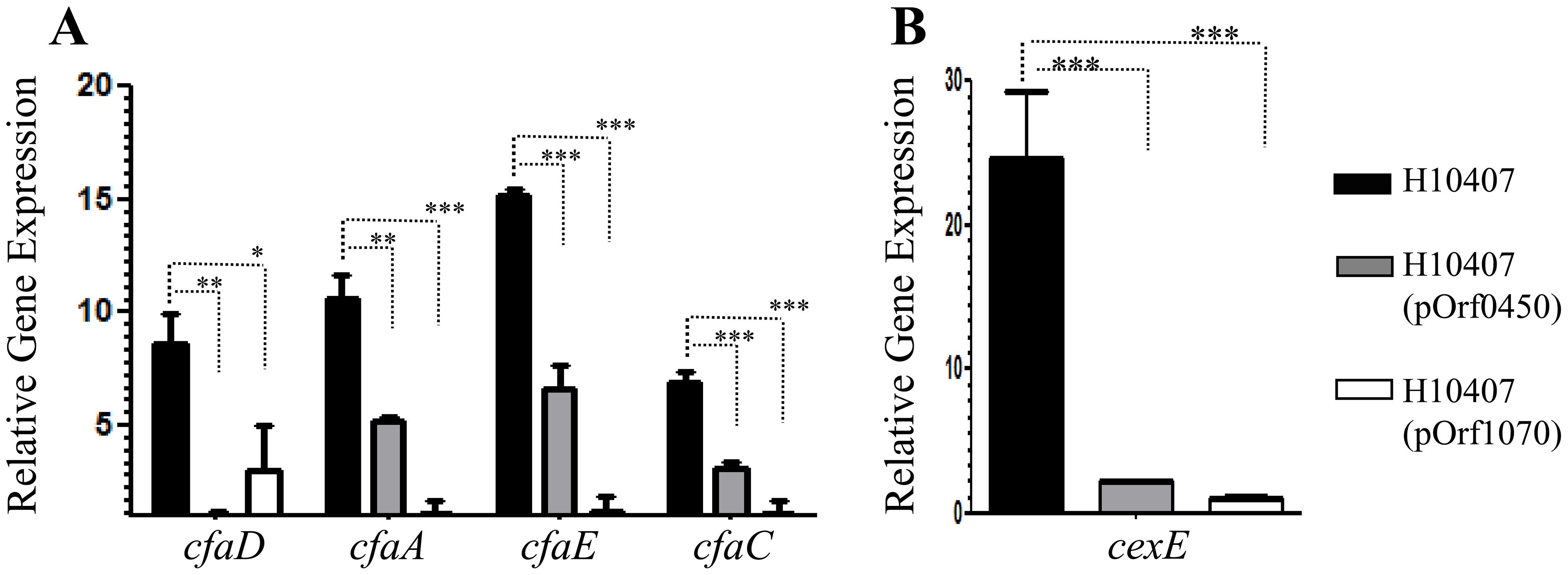 Repression of <i>cfaD/rns</i> and its regulon by ETEC-orf60 homologs.