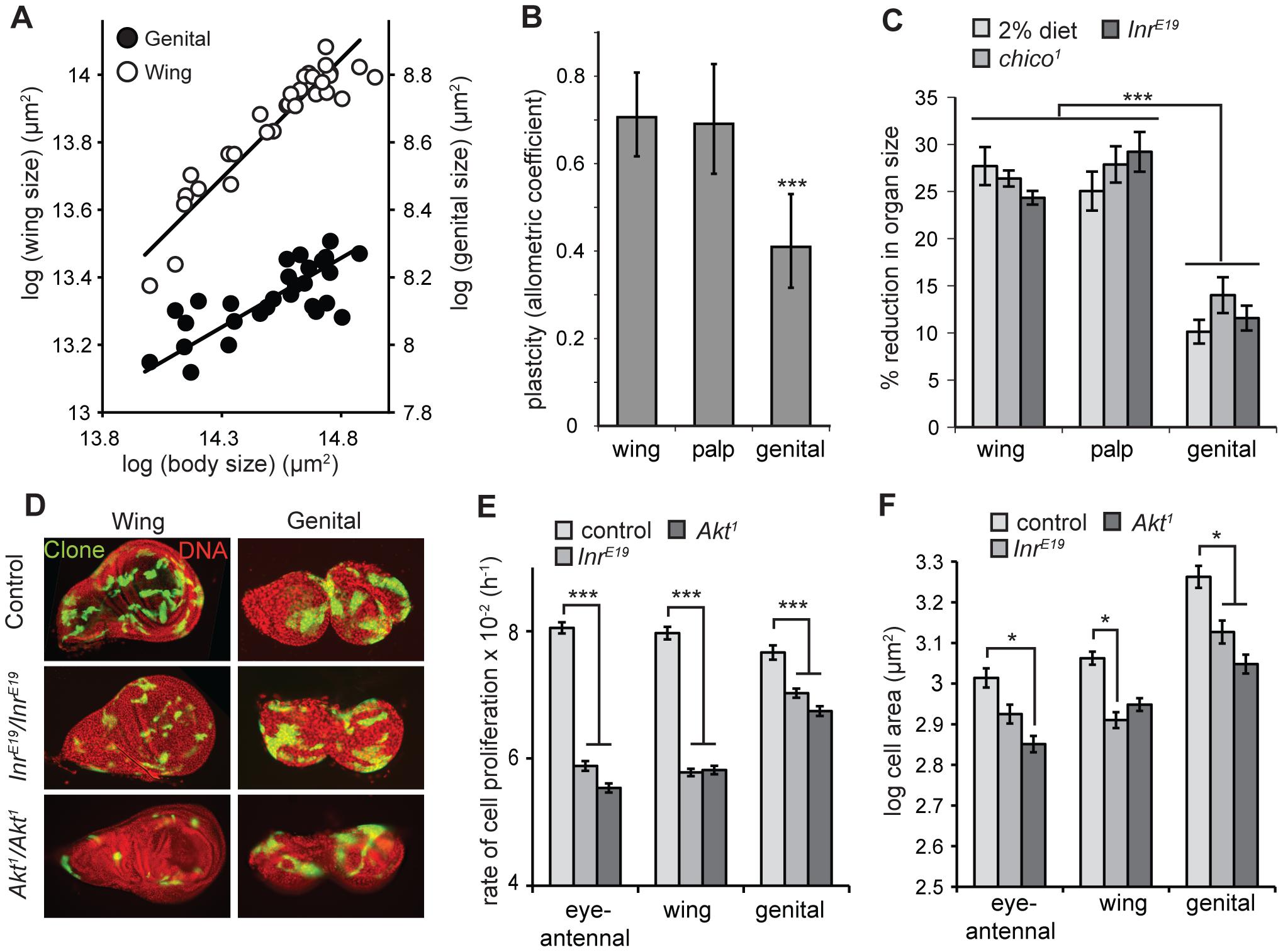 The genitalia of male <i>Drosophila</i> are nutrition- and insulin-insensitive.