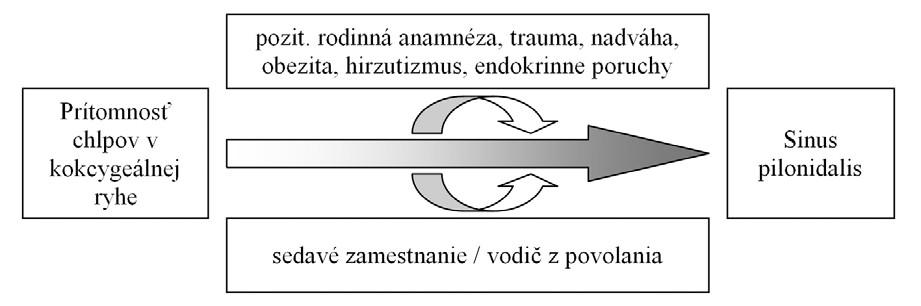 Názorný nákres rizikových faktorov vzniku pilonidálneho sinusu – voľne podľa [2, 7]. Obr. 1. Scheme of pilonidal sinus disease risk factors – according [2, 7].
