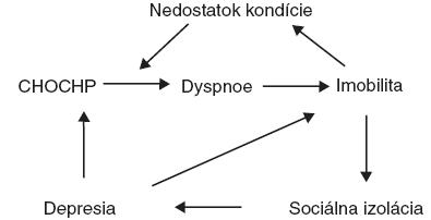 Cyklus fyzických, sociálnych a psychosociálnych dôsledkov CHOCHP