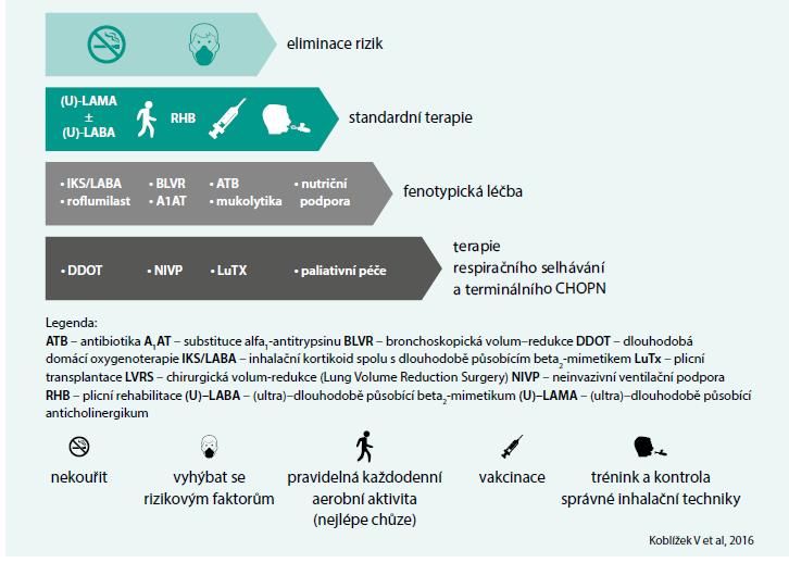 Schéma 2. Zjednodušené schéma léčby CHOPN z roku 2016