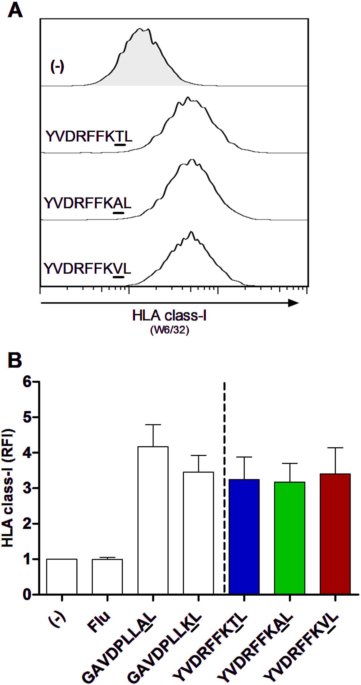 Equal HLA-C*03:04 stabilization on TAP-blocked 721.221-ICP47-C*03:04 cell line with HIV-1 p24 Gag T<sub>Gag303</sub> wild-type and variant peptides.