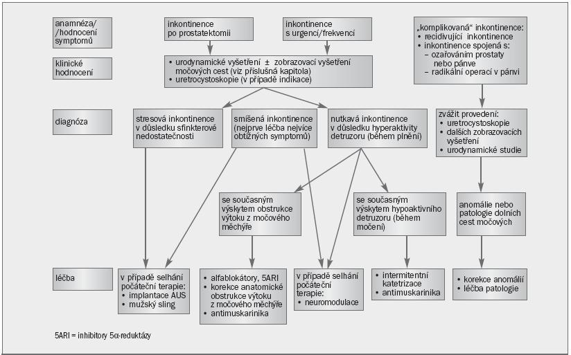 Schéma 2. Algoritmus pro specializovaný postup při řešení močové inkontinence u mužů.