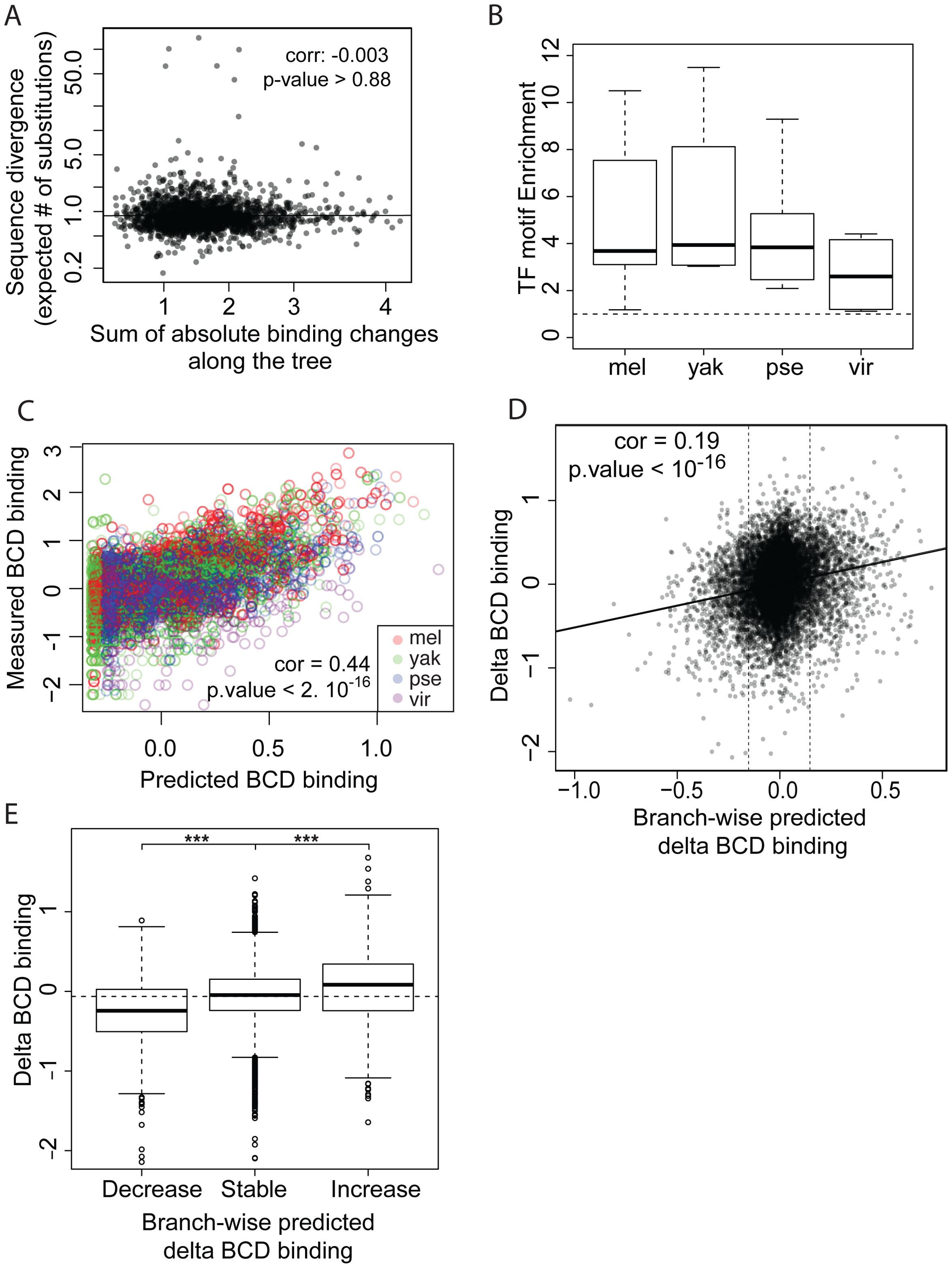 TF-specific motif turnover drives TF binding divergence.