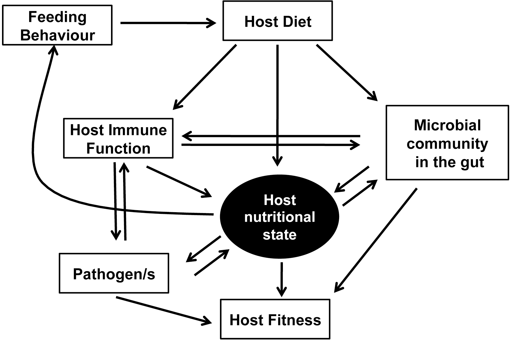 The network of interactions between nutrition and immunity.