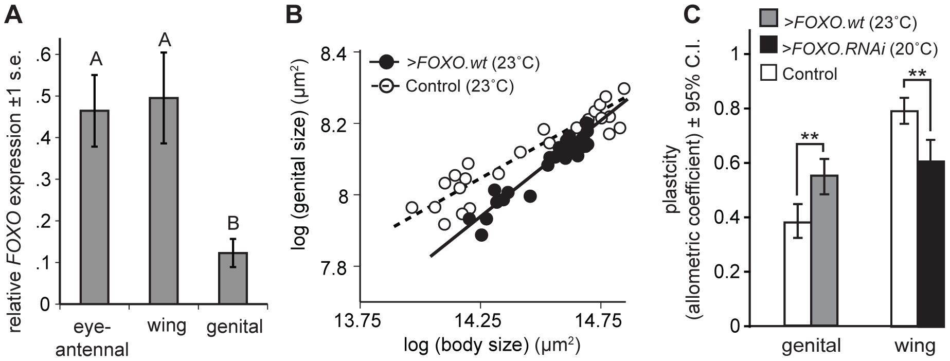 Organ-specific nutritional plasticity is regulated by differential expression of <i>FOXO</i>.