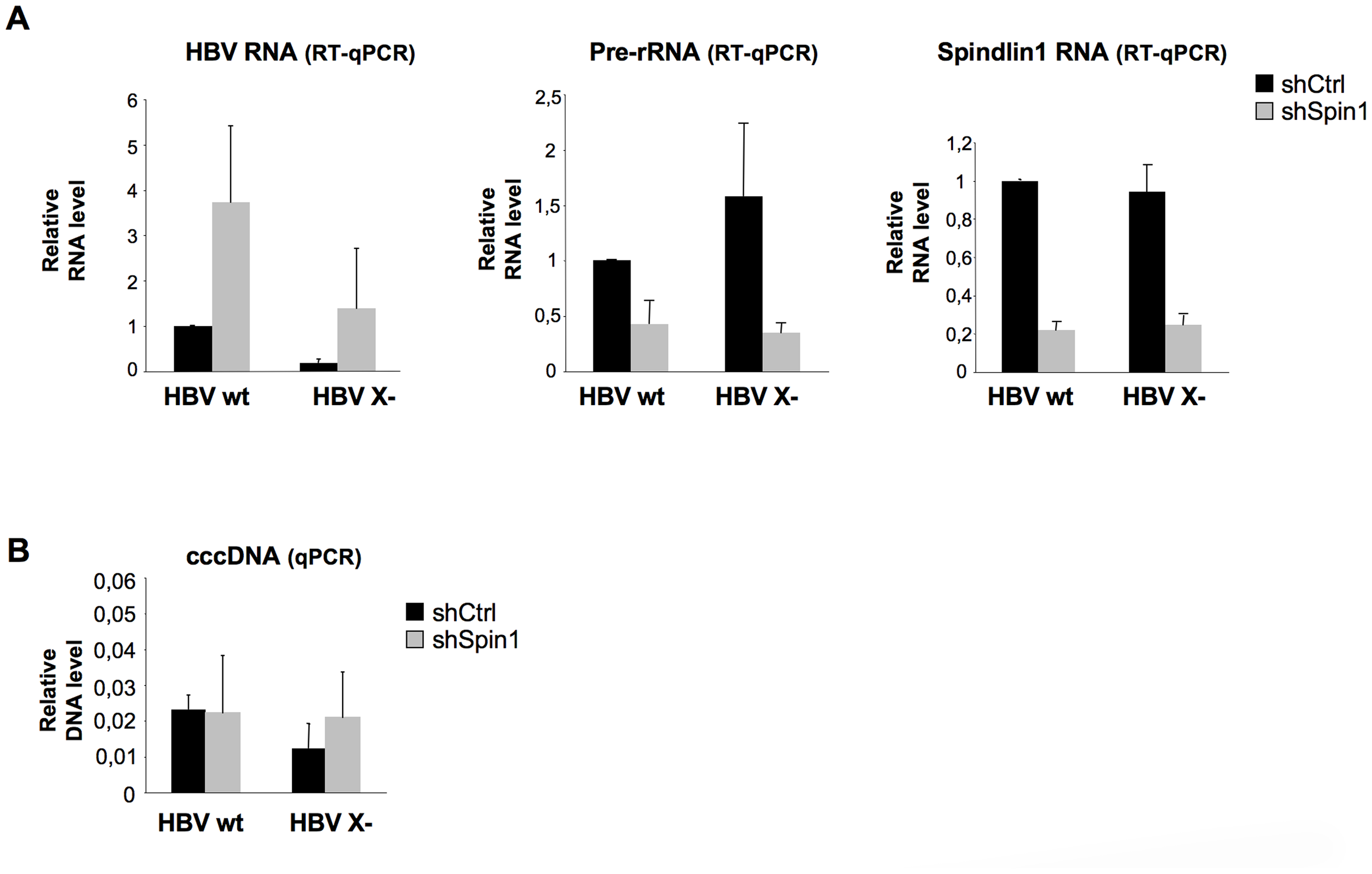 Endogenous Spindlin1 represses HBV transcription in the setting of infection.