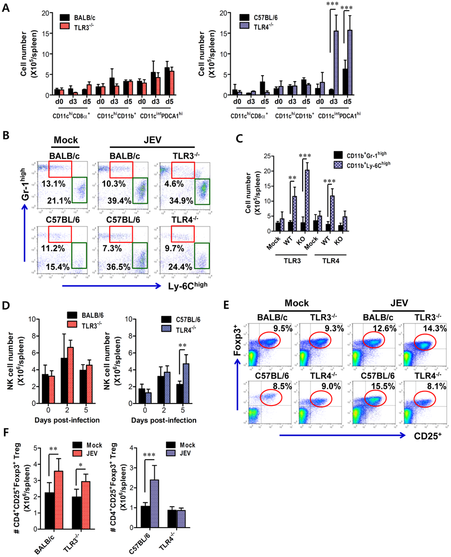 Alteration of myeloid-derived and immune cell subsets in lymphoid tissues of TLR3<sup>−/−</sup> and TLR4<sup>−/−</sup> mice during JE progression.