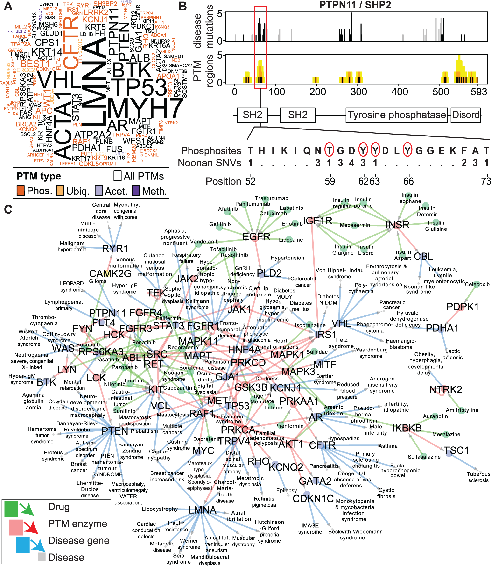 Enriched disease mutations and drug interactions of PTM regions.